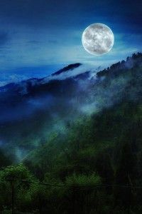 A moonlit night in Mane Bhanjang, West Bengal, India