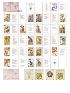 The Complete Book of Flower Fairies with colored pages dollhouse miniature