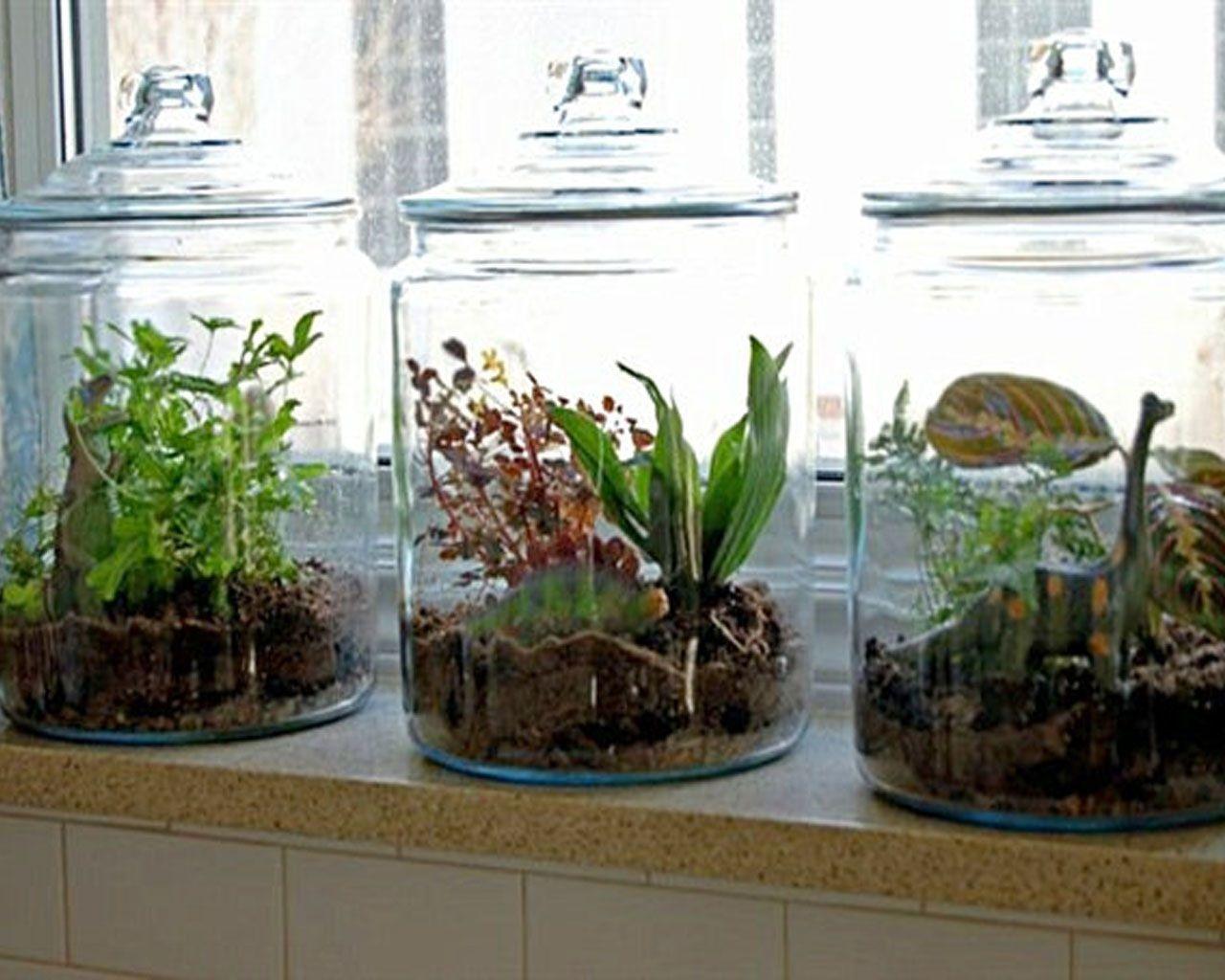 Bon Remarkable Indoor Herb Garden