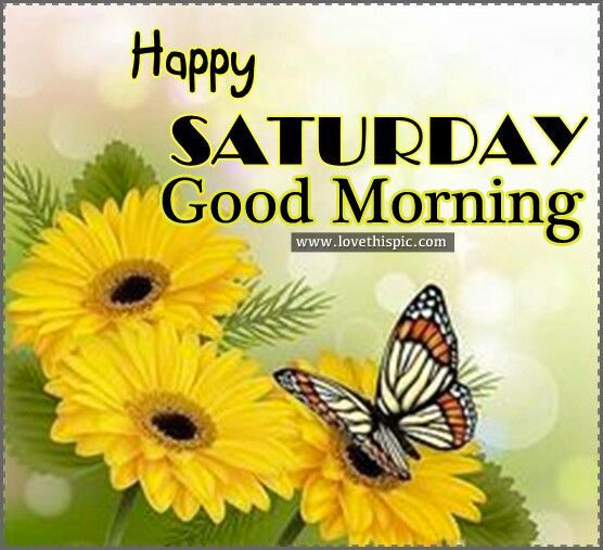 Happy Saturday Good Morning For My Baby Saturday Morning