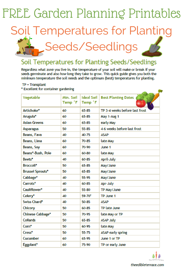 Free Garden Planting Printable List Of Soil Temperatures For Planting Vegetable Seeds Garden Planning Vegetable Garden Planner Container Gardening Vegetables