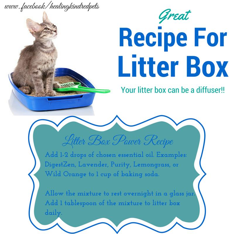 Cat Litter Box Recipe Using Essential Oils Essential Oils Cats Cat Essentials Essential Oils