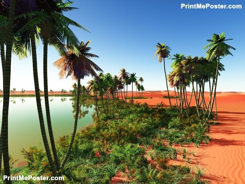 Poster Of African Oasis Nature Posters Poster Printmeposter