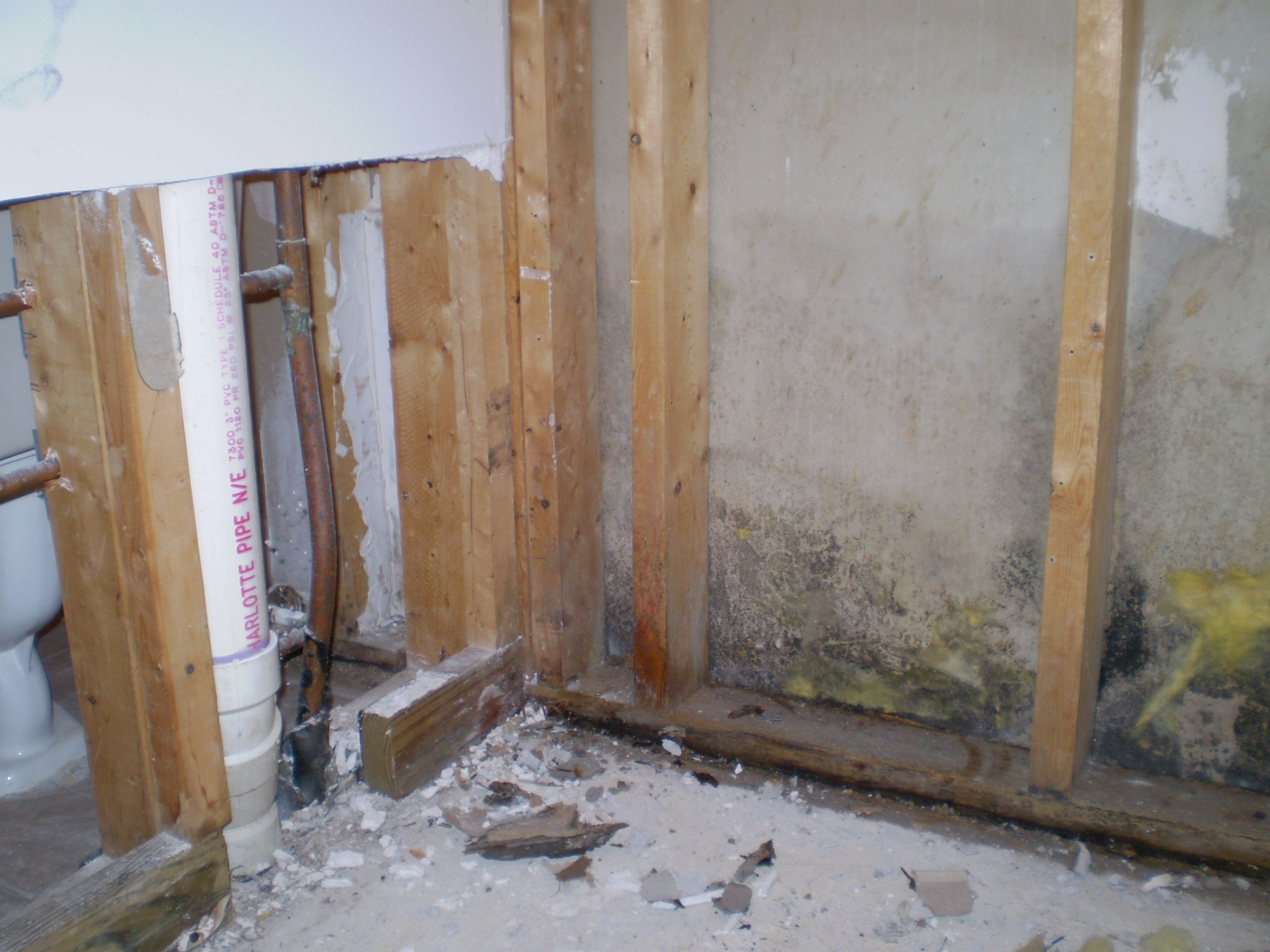 mold inside walls moldremoval mold before mold removal wall molding wall air vent. Black Bedroom Furniture Sets. Home Design Ideas