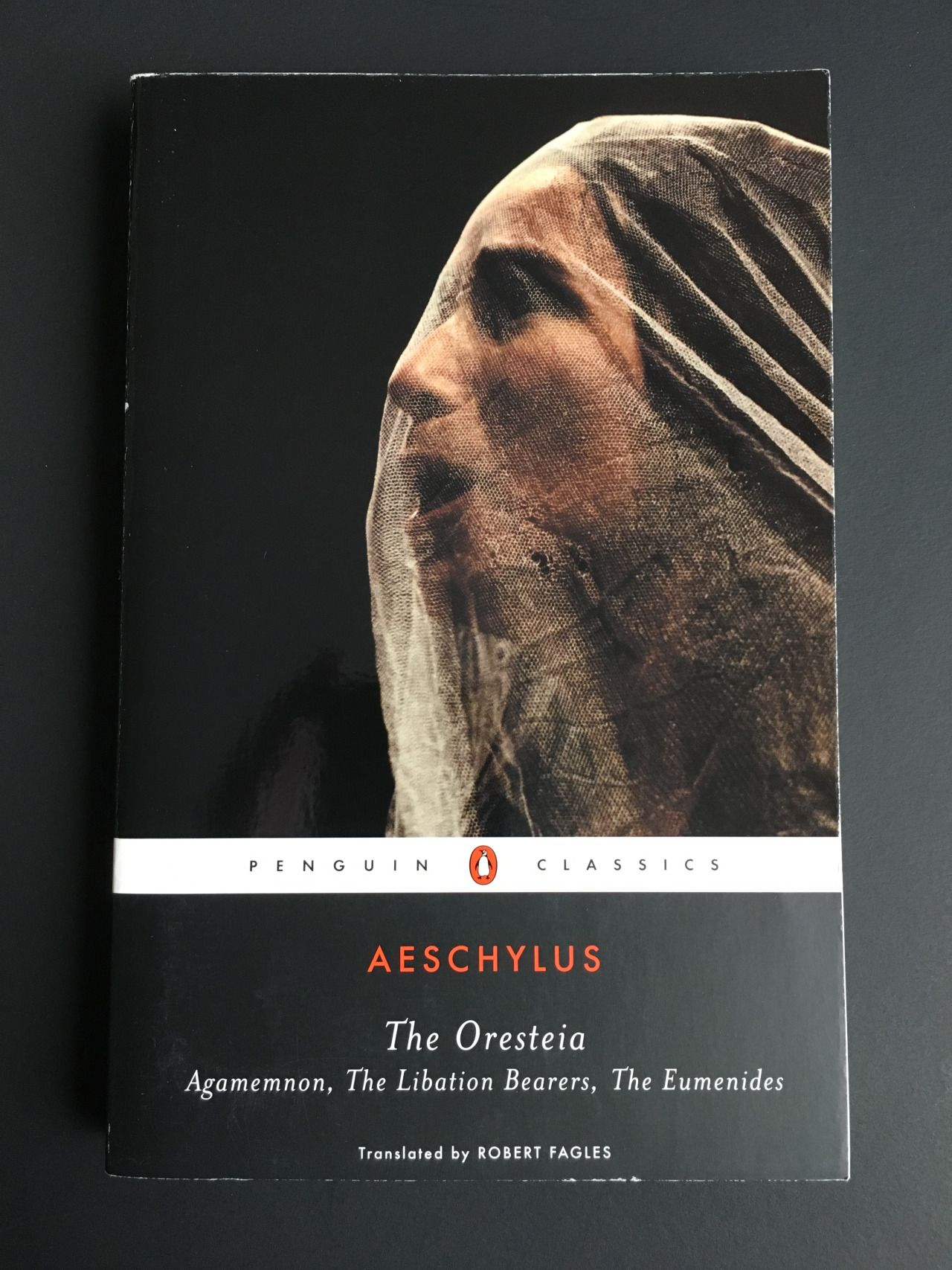 agamemnon by aeschylus essay  agamemnon is the first book in the orenstein trilogy written by the famous greek tragedy writer, aeschylus agamemnon is a story of justice and revenge the story takes place in a city called argos.