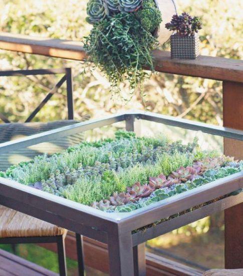 10 Creative Diy Vegetable Gardening Hacks: IKEA Hack: How To Make This DIY Living Succulent Table