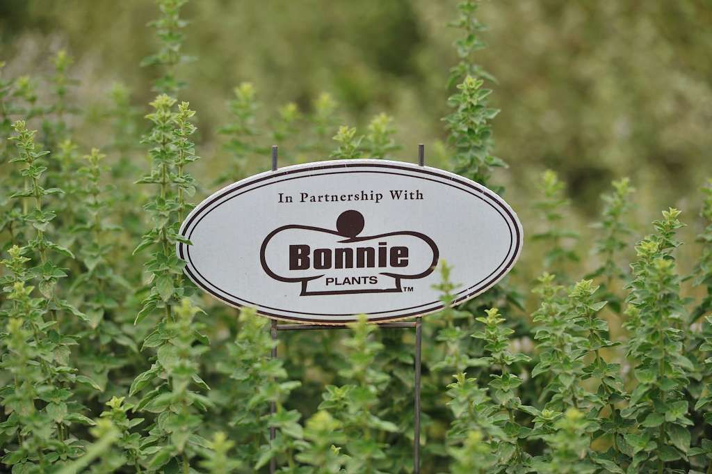 What a fun scavenger hunt from @Bonnie Plants