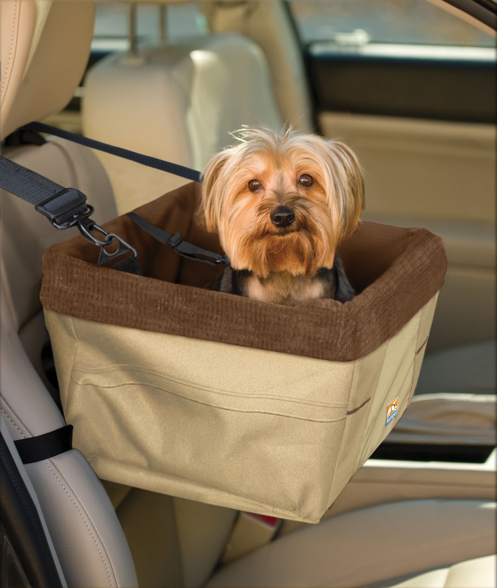 Dog Car Booster Seat  how cute..