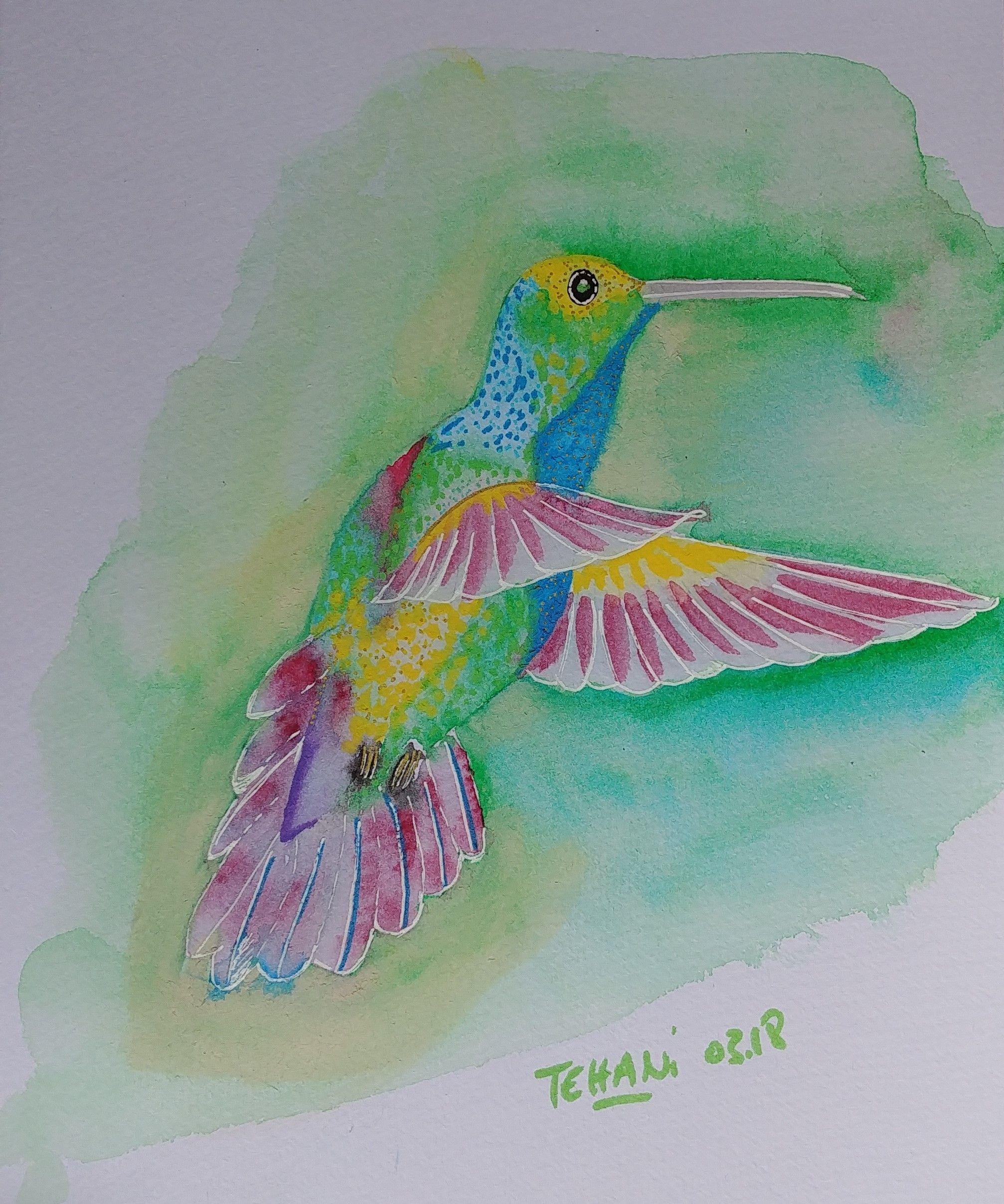 Colibri Peinture Danse Latine Aquarelle