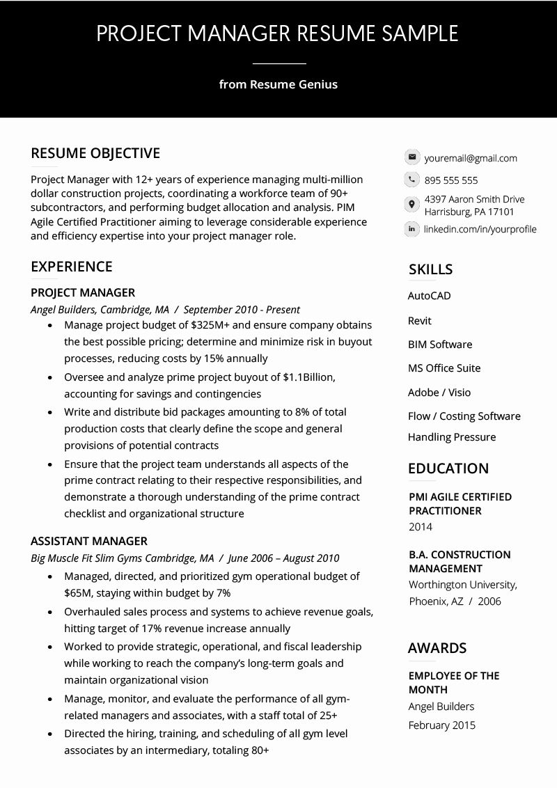 20 It Project Manager Resume in 2020 Project manager resume