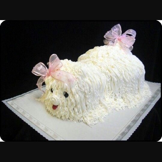 Maltipoo Cake Models Pretty Cakes Beautiful Amazing Las Vegas