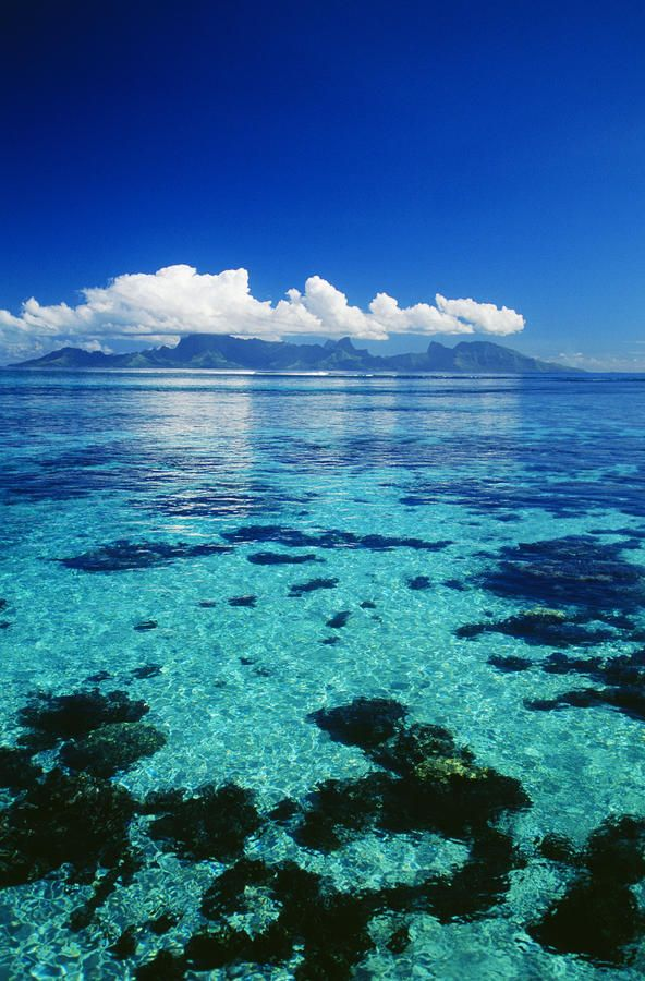 This looks amaze... wish we were there! French Polynesia, Moorea