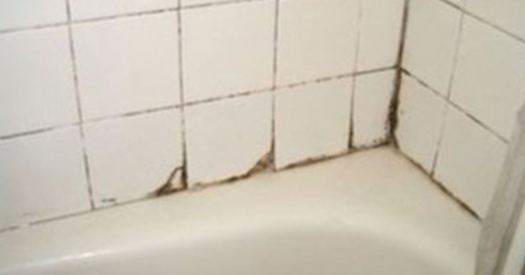 A Simple Tea Tree Oil Spray That Will Eliminate Mould Forever Bathroom Cleaning Solutions Mold In Bathroom Shower Mold