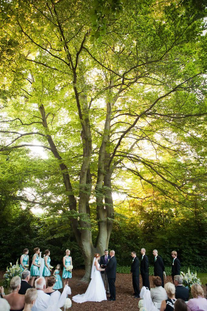 Arlene Chambers Photography Zoo Wedding Woodland Park Zoo Seattle Area
