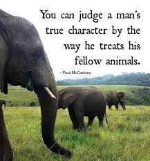 you can easily judge the character of a man by how he treats animals - Google Search