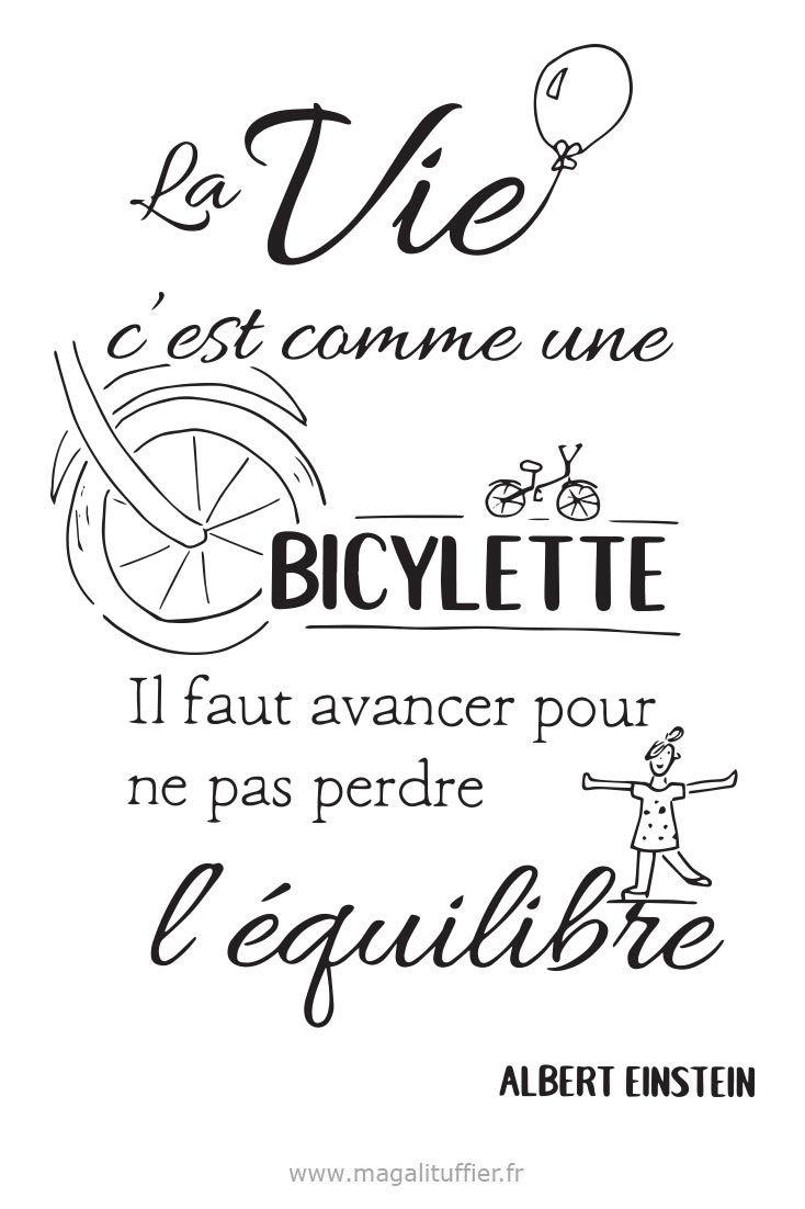 La Vie C Est Comme Une Bicyclette : comme, bicyclette, Citation, C'est, Comme, Bicyclette., Avancer, Perdre, L'équilibre., Méditer, Citation,, Citations, Mots,, Belles