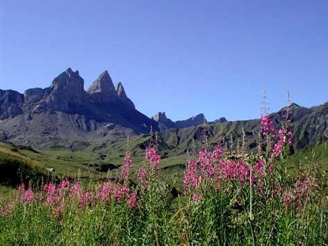au pays des Aiguilles d'Arves -  sur le plateau des Albiez -  Savoie