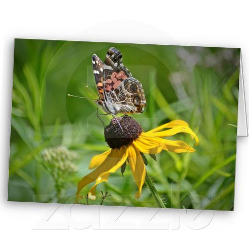 Butterfly Flower Notecard