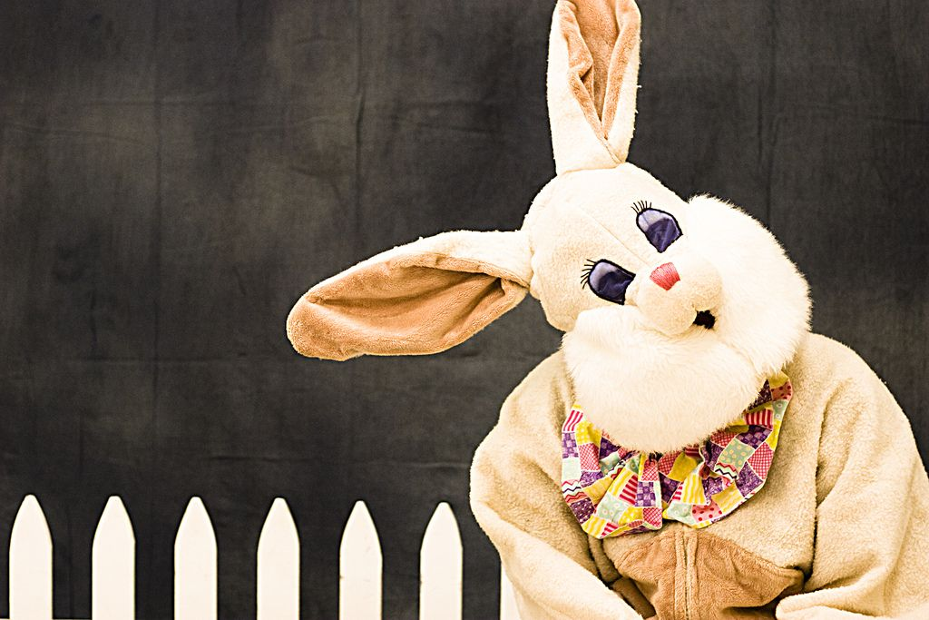 What I learned from the Easter Bunny…