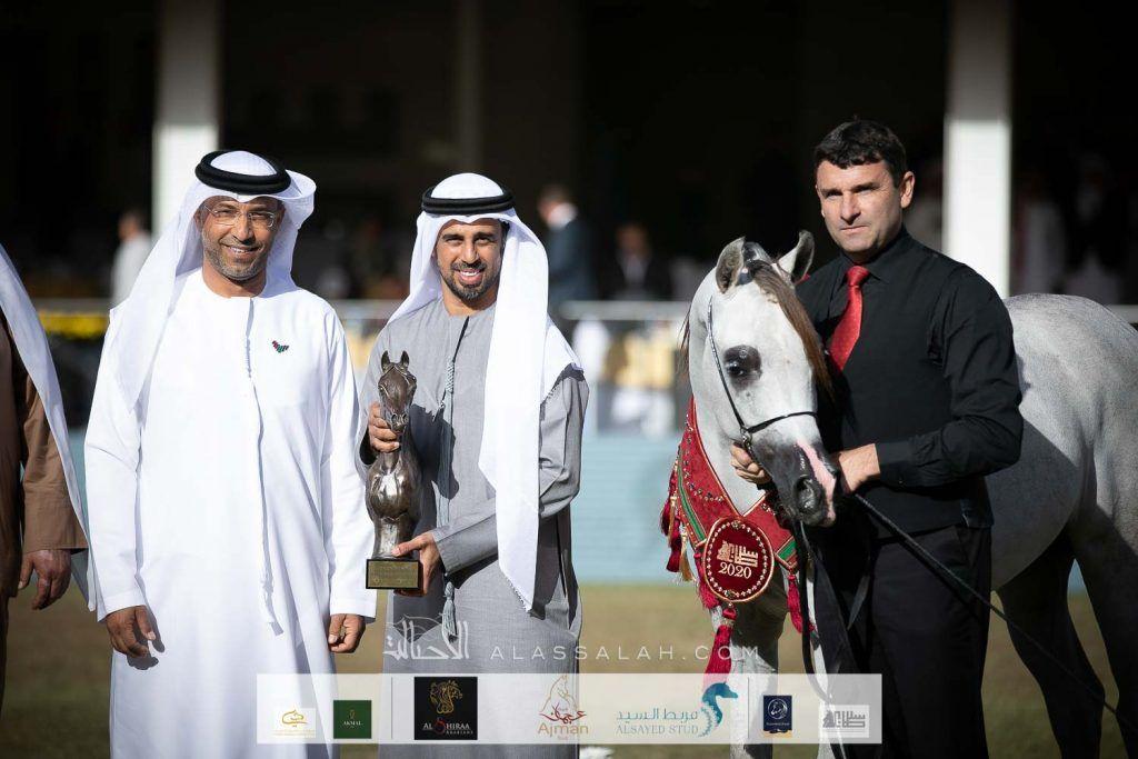 ذهبية وفضيتان ينتزعها عجمان في بطولة الأمير سلطان العالمية للجواد العربي 2020 In 2020 Coat Arabian Horse Jackets