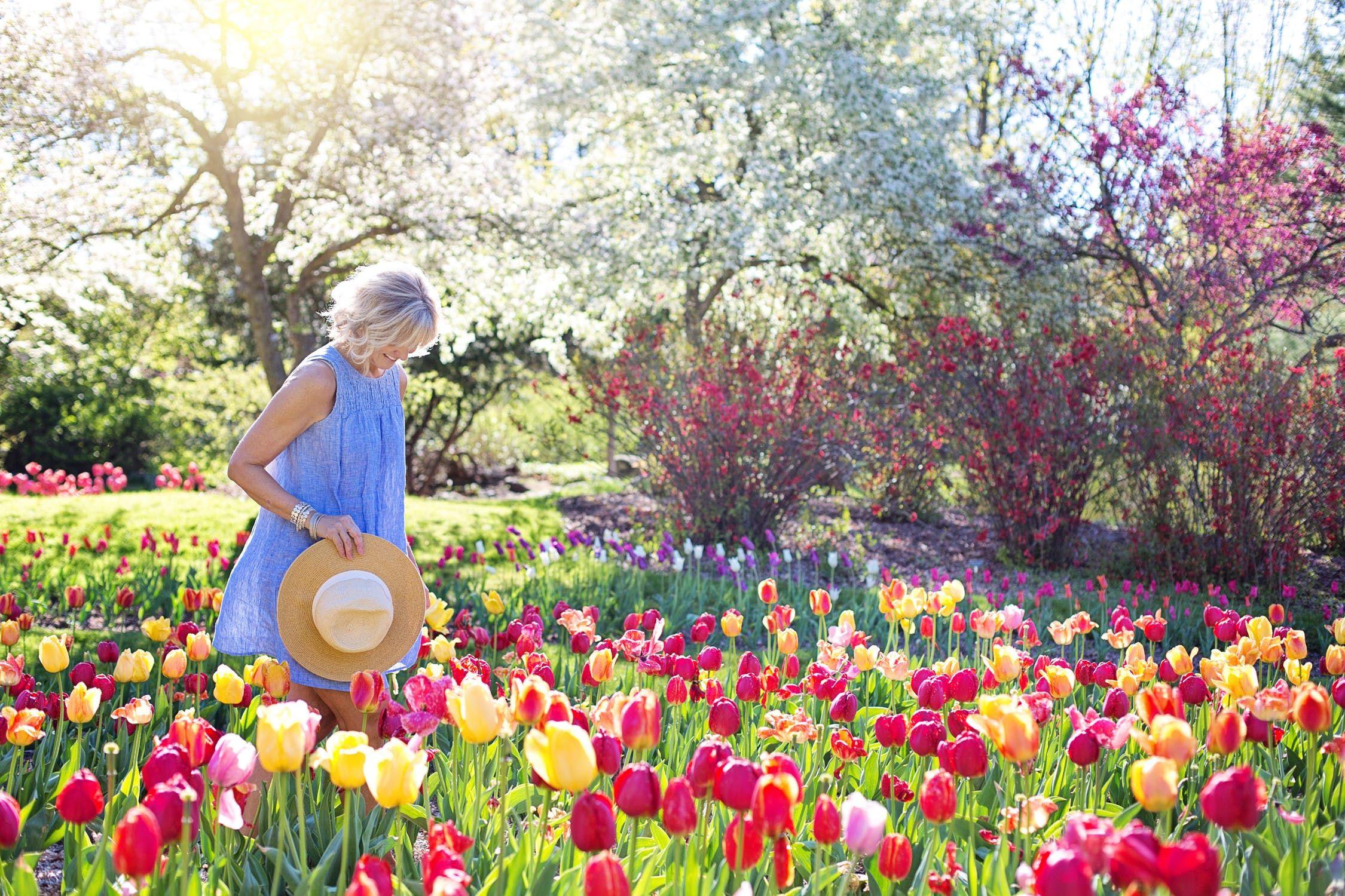 Comment Faire Un Beau Jardin fleurs de printemps: comment créer un beau jardin (avec