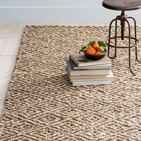 Textured Jute Rug For Entree Or Living Room West
