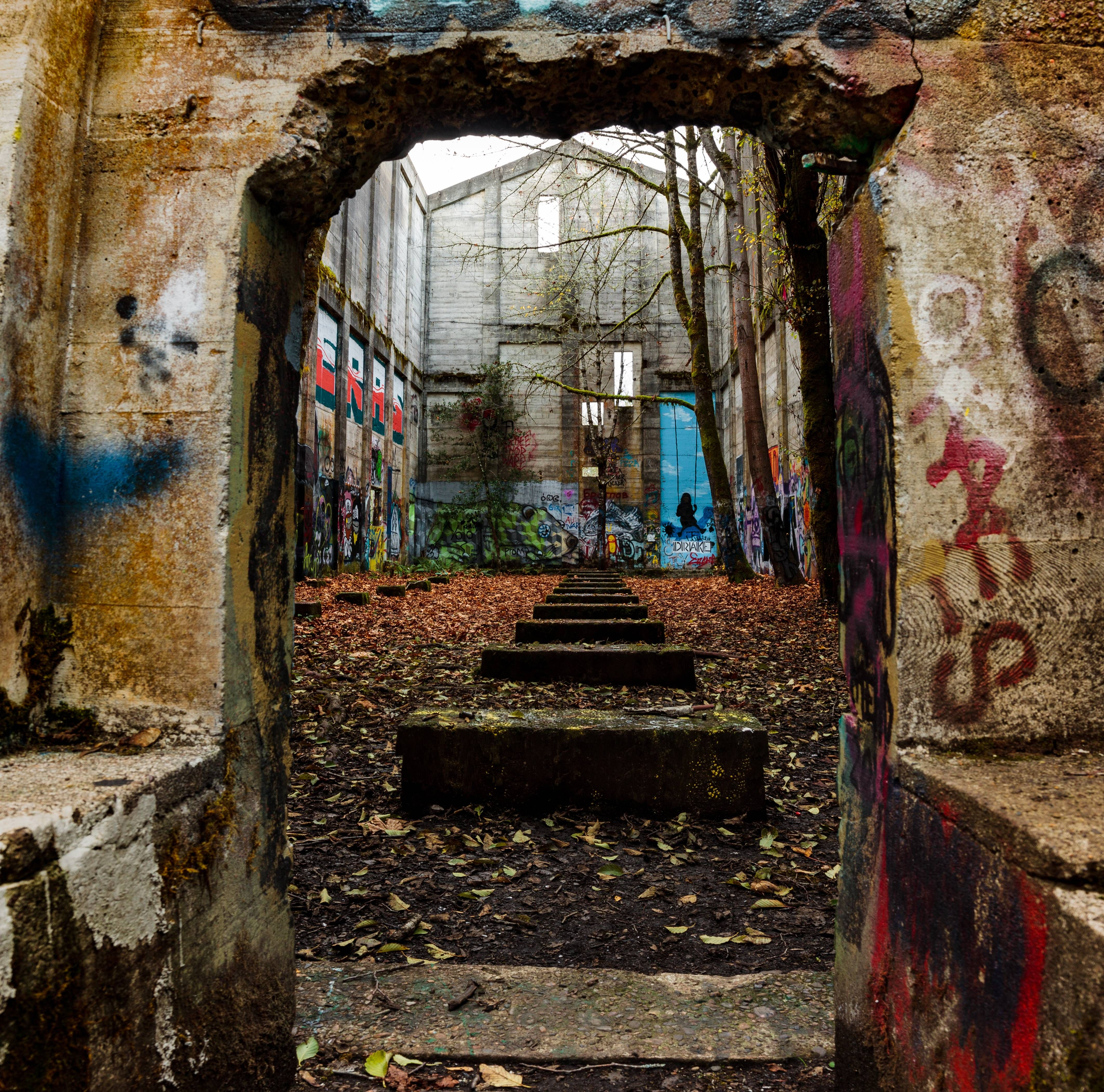 Abandoned Fuel Bunker With Trees Growing Inside. Vernonia