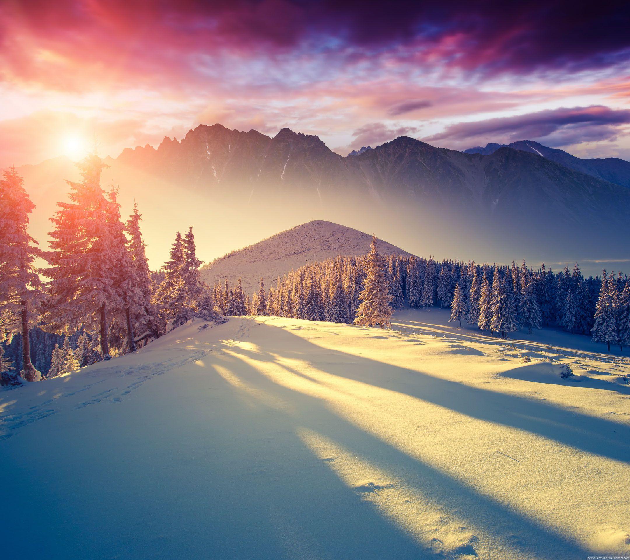 Winter Snow Desktop Wallpaper THIS Wallpaper Пейзажи