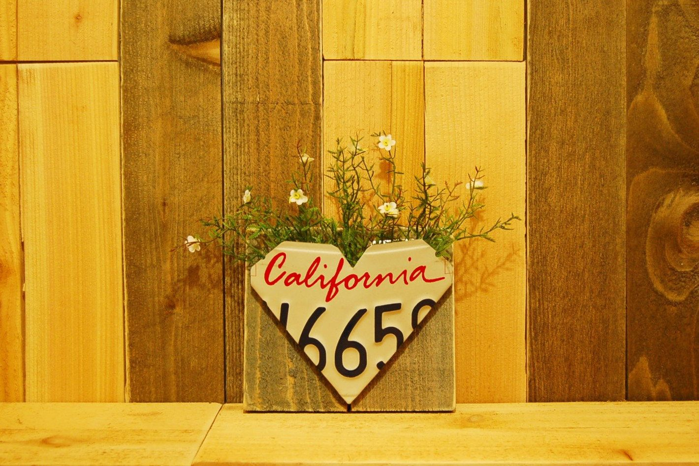 California License Plate Wall Pocket for Indoors or Outdoors - Coop ...