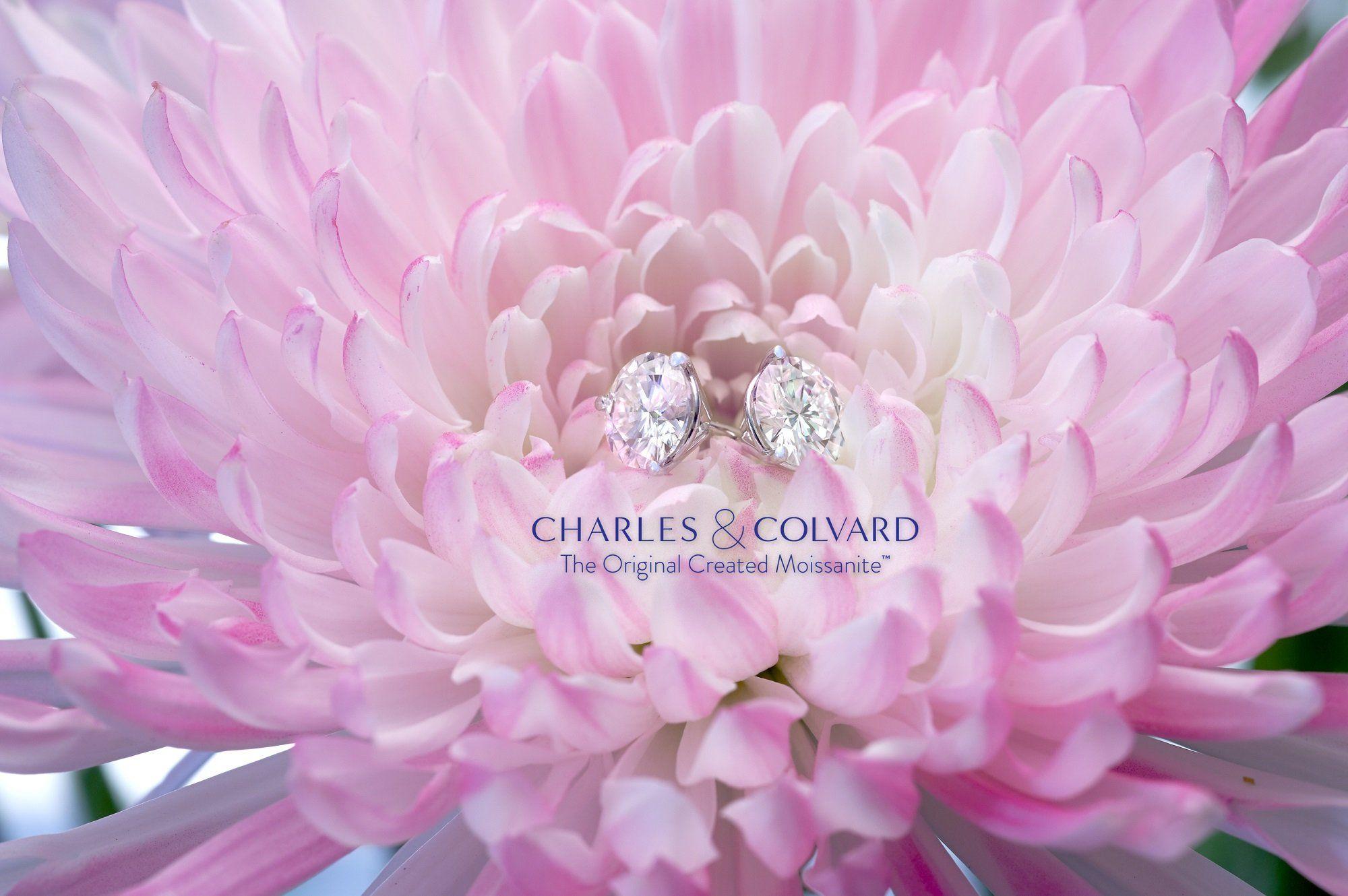 a88b0e5fa Charles & Colvard Forever Classic 6mm 1.60cttw DEW White Created Moissanite  14K White Gold Screw Back Posts Round Martini Stud Earrings #affiliate # diamond