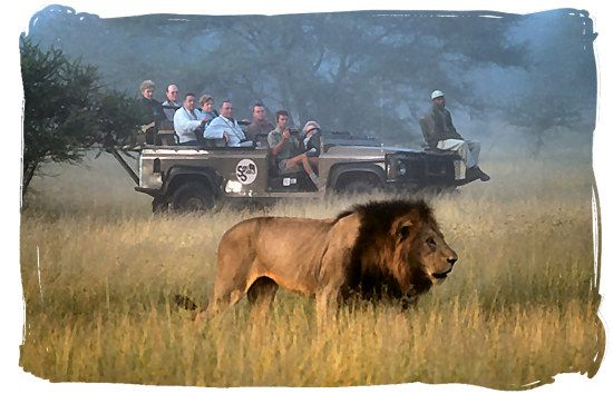 I would LOVE to go on an African safari someday!  So, this could also go on my places I'd like to go board....