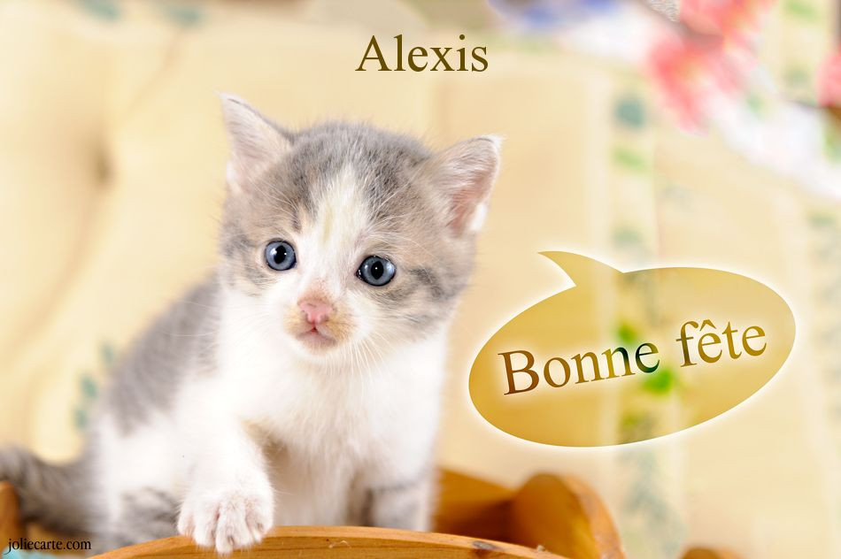 Carte D Anniversaire Virtuelle Gratuite Avec Prenom Lovely Cartes Virtuelles Bonne Fete Alexis Bonne Fete Carte Virtuelle Carte Anniversaire