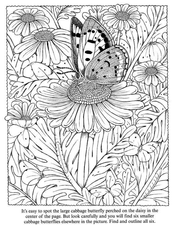 color it yourself psychedelic butterfly coloring