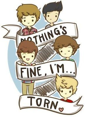 One Direction nothing's fine I'm torn   One direction