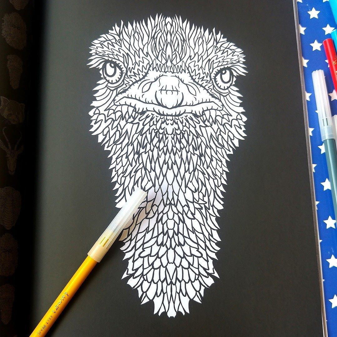 ostrich from the complicated animals coloring book out now