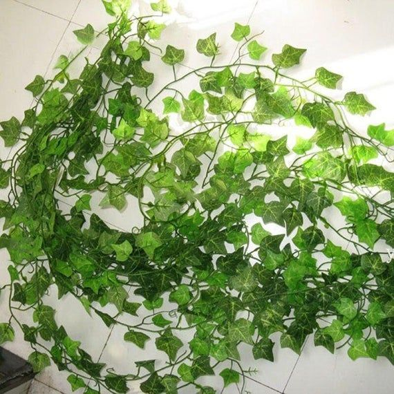 2.4M Artificial Ivy green Leaf Garland Plants Vine Fake Foliage Flowers Home Decor Plastic Artificia #leafgarland 2.4M Artificial Ivy green Leaf Garland Plants Vine Fake Foliage Flowers Home Decor Plastic Artificia #leafgarland 2.4M Artificial Ivy green Leaf Garland Plants Vine Fake Foliage Flowers Home Decor Plastic Artificia #leafgarland 2.4M Artificial Ivy green Leaf Garland Plants Vine Fake Foliage Flowers Home Decor Plastic Artificia #leafgarland