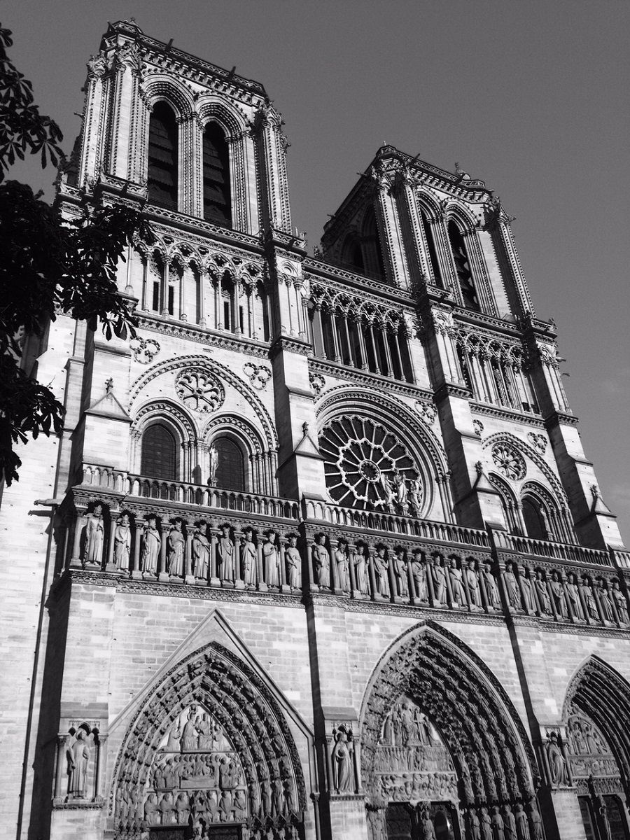 The Notre Dame Cathedral in Paris.  Get there for less with Traveldealalert.com