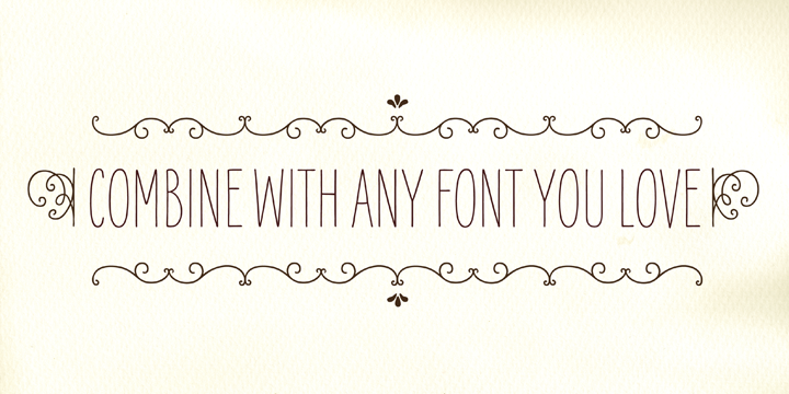 oh so glam // a blog by blush paper co.: fonts