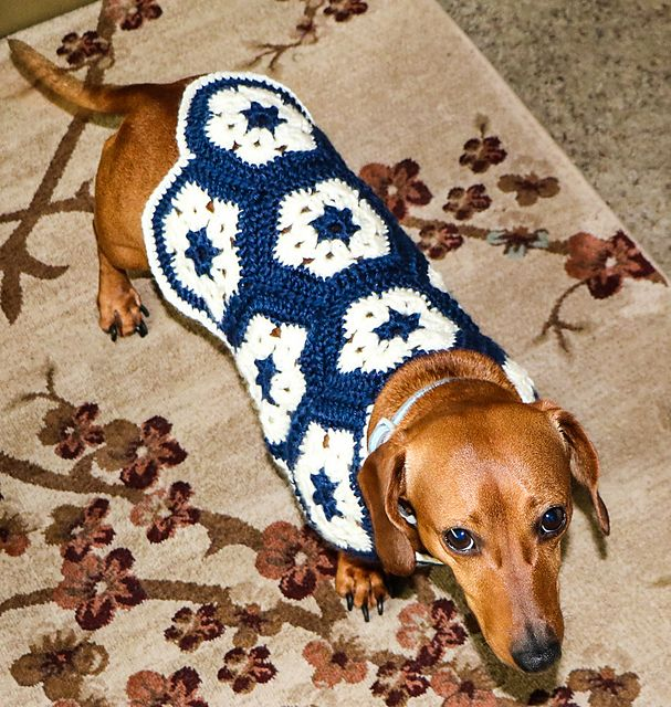 Ravelry: African Flower Dog Sweater pattern by Melissa Hollenbeck ...