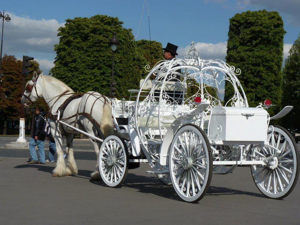 Le carrosse de cendrillon carrosse mariage pinterest - Cendrillon et son carrosse ...