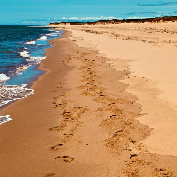 Prince Edward Island Beaches: The Best Beaches In PEI (With Images)