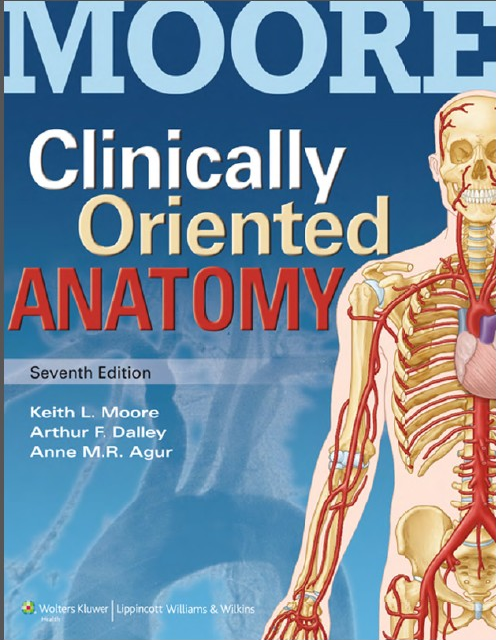 Clinically Oriented Anatomy Moore Pdf Free Download Its Night And I