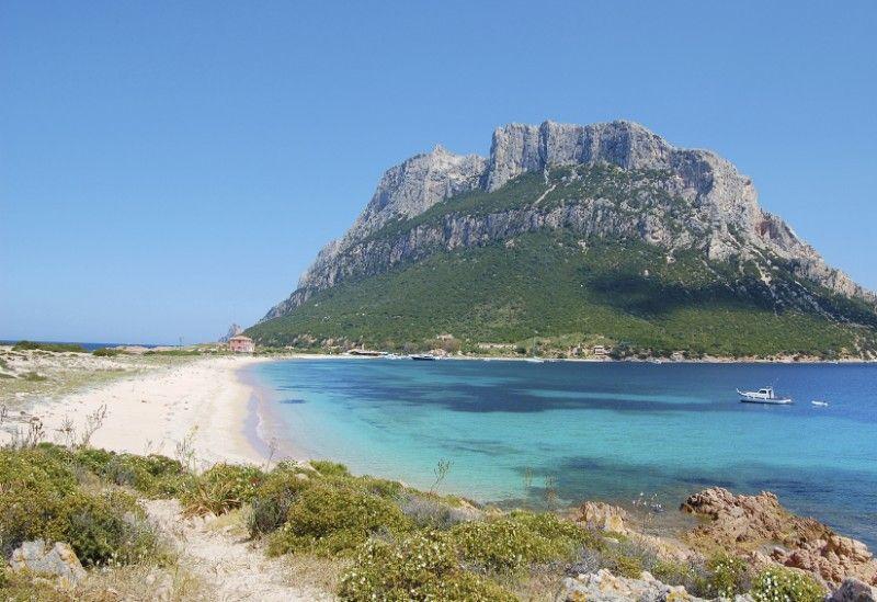 1_spiaggia isola tavolara.jpg (800×549)