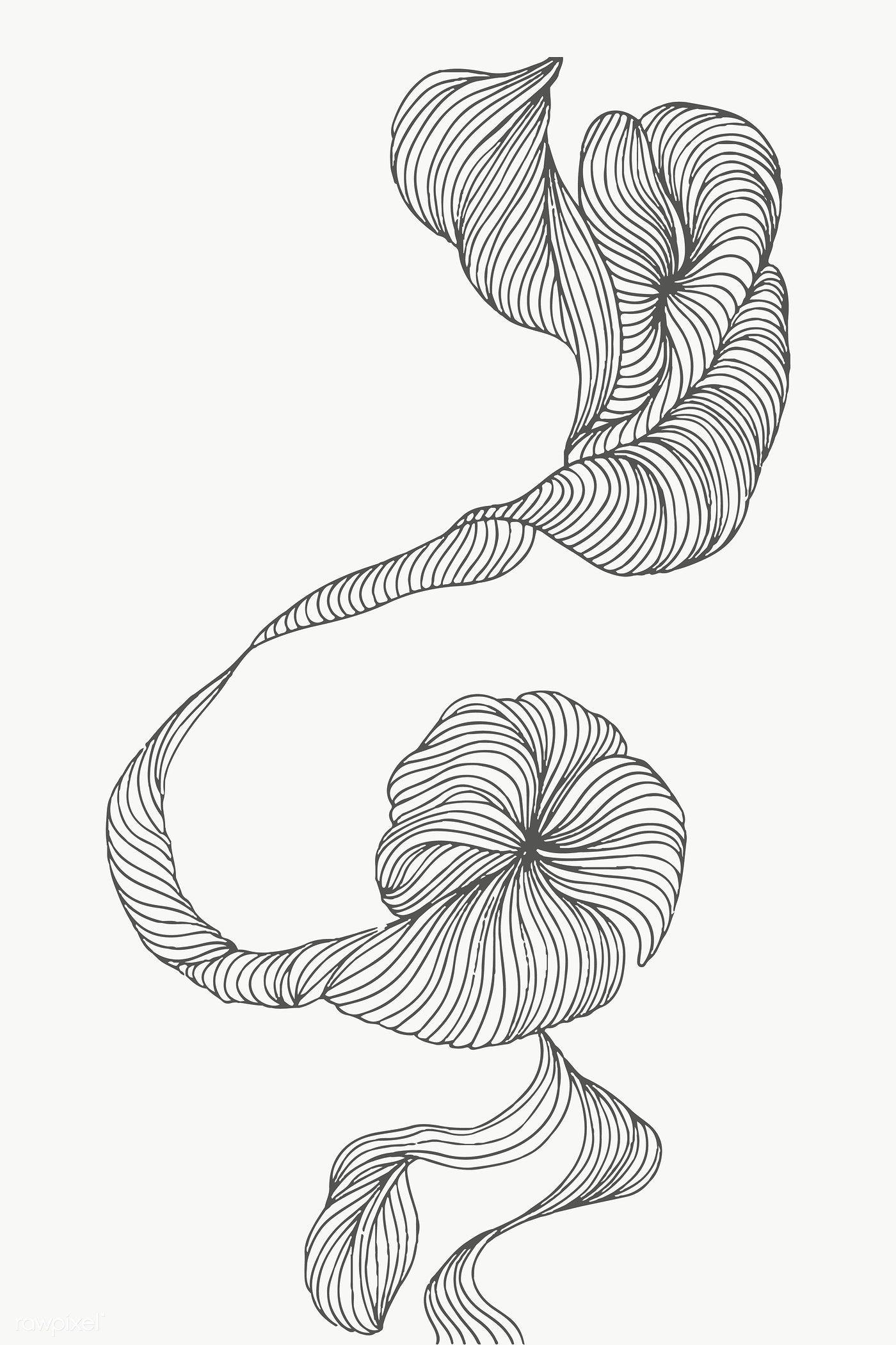 Swirly Abstract Art Design Transparent Png Premium Image By Rawpixel Com Nunny Linear Art Abstract Art Collection Abstract