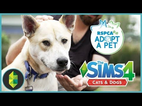 RSPCA and The Sims™ Partner for Adoption Campaign