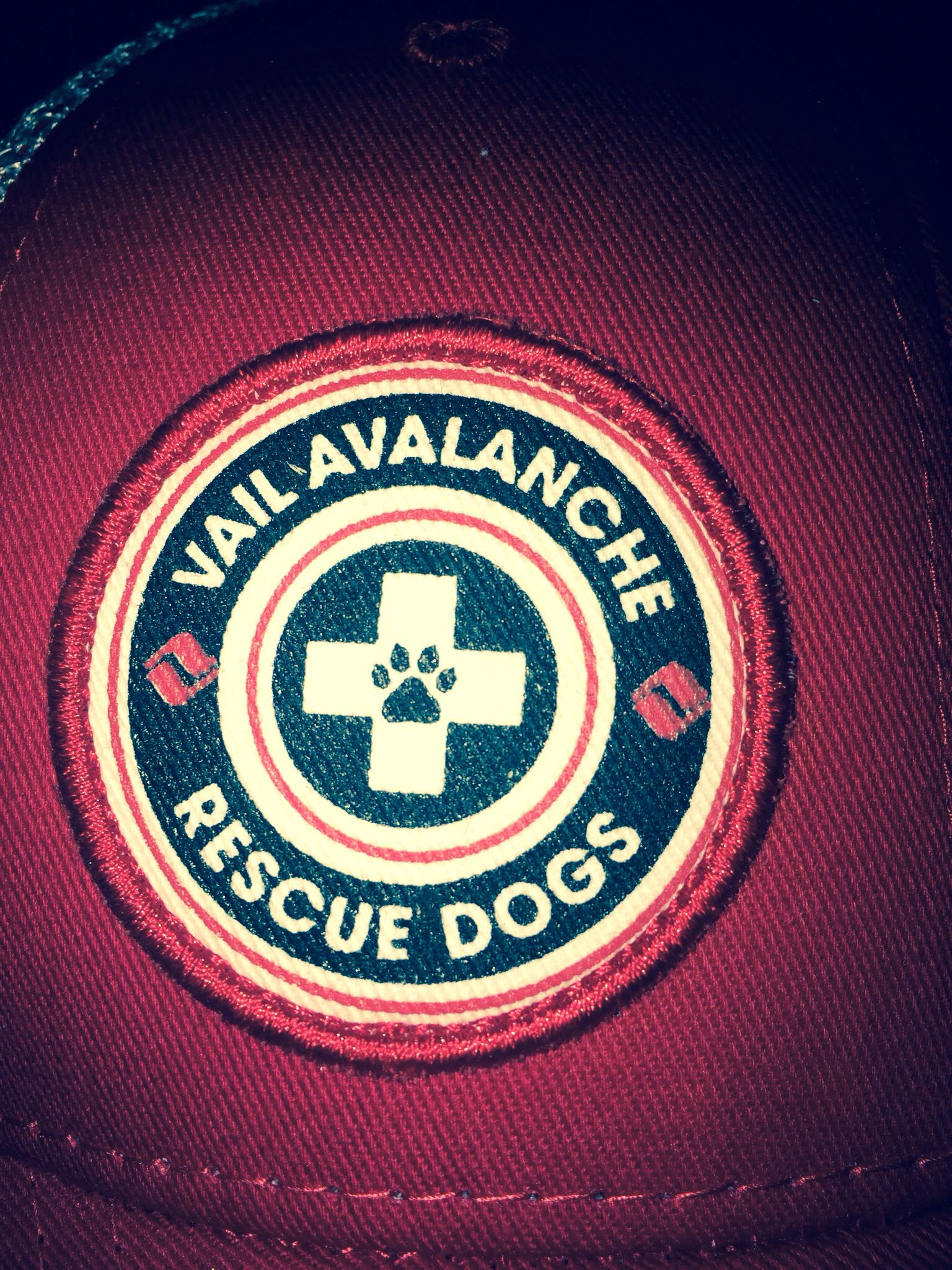 Love this logo from vail avalanche rescue dogs trademarks love this logo from vail avalanche rescue dogs buycottarizona Image collections
