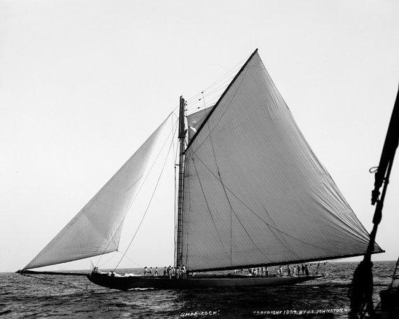Shamrock Racing Yacht 1899 Photo Reproduction 8x10 Sailboat at America's Cup Race