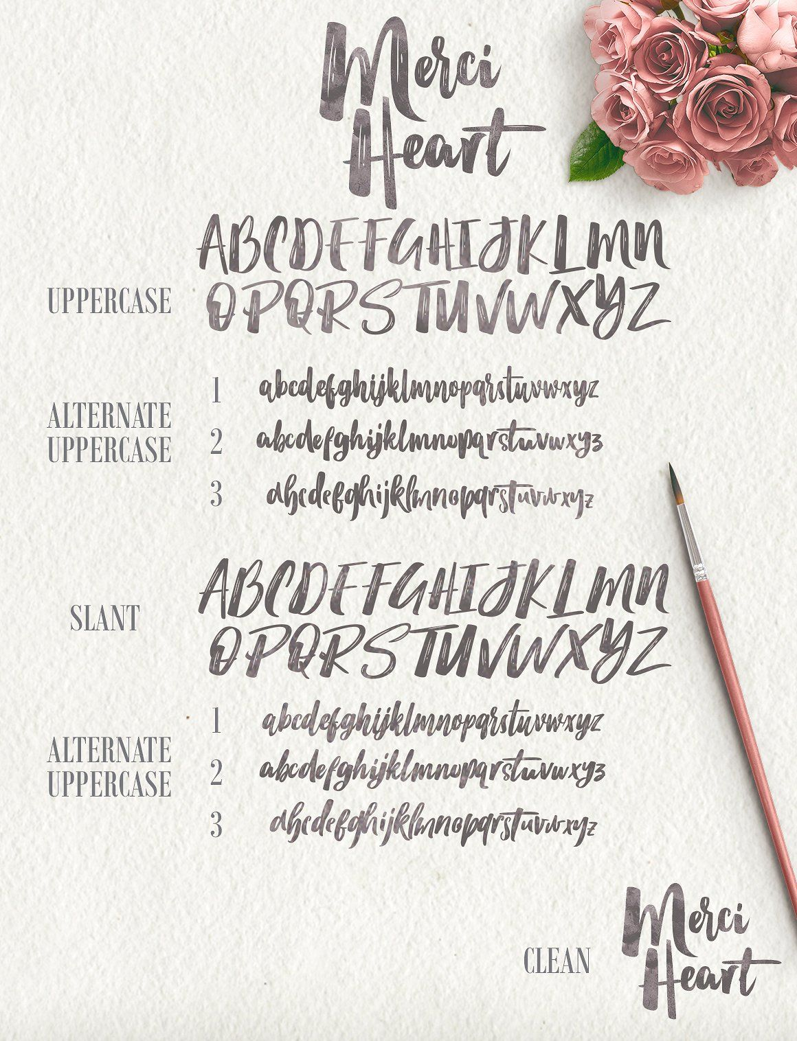 Merci Heart Brush 50 Off Files Amp Features Stylistic