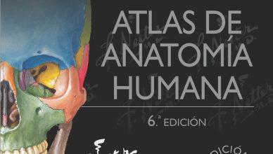 Anatomia De Moore 6 Edicion Pdf