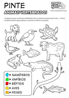 Pintar Animais Vertebrados Atividades Animais Atividades Sobre